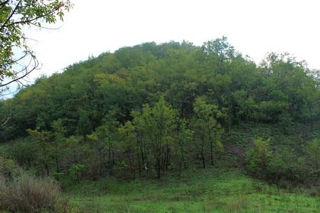 Файл:Террикон шахты Лидиевка.jpg