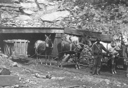 Файл:Pennsylvania Mine-21.jpg