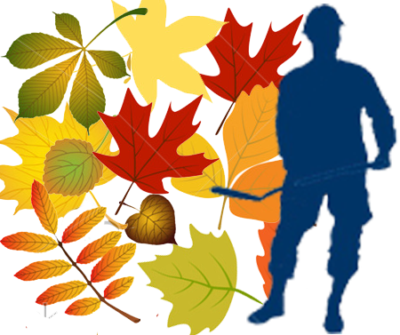 Файл:Осень.png