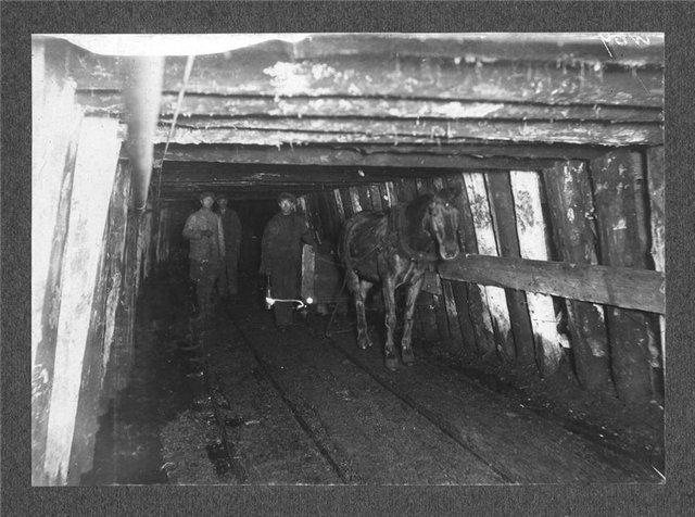 Файл:Конная откатка вагонеток с углем.jpg