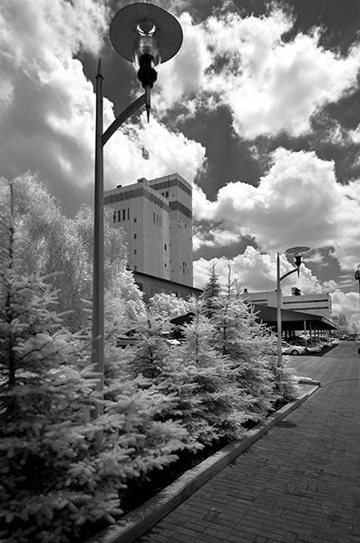 Файл:Георгий Розов-20.jpg