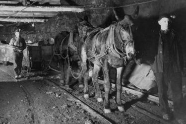 Hudson Coal Co. Карбондейл