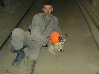 Miner's dog-1.jpg