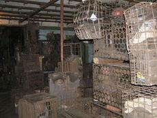 Рабочая баня шахты Баракова сентябрь 2007-6.JPG