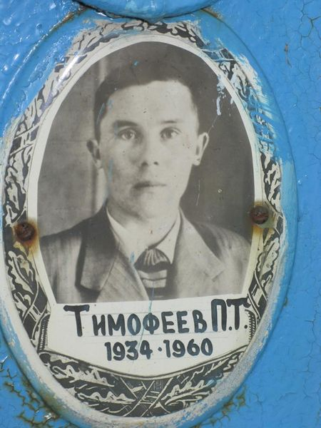 Файл:Тимофеев П.Т.JPG